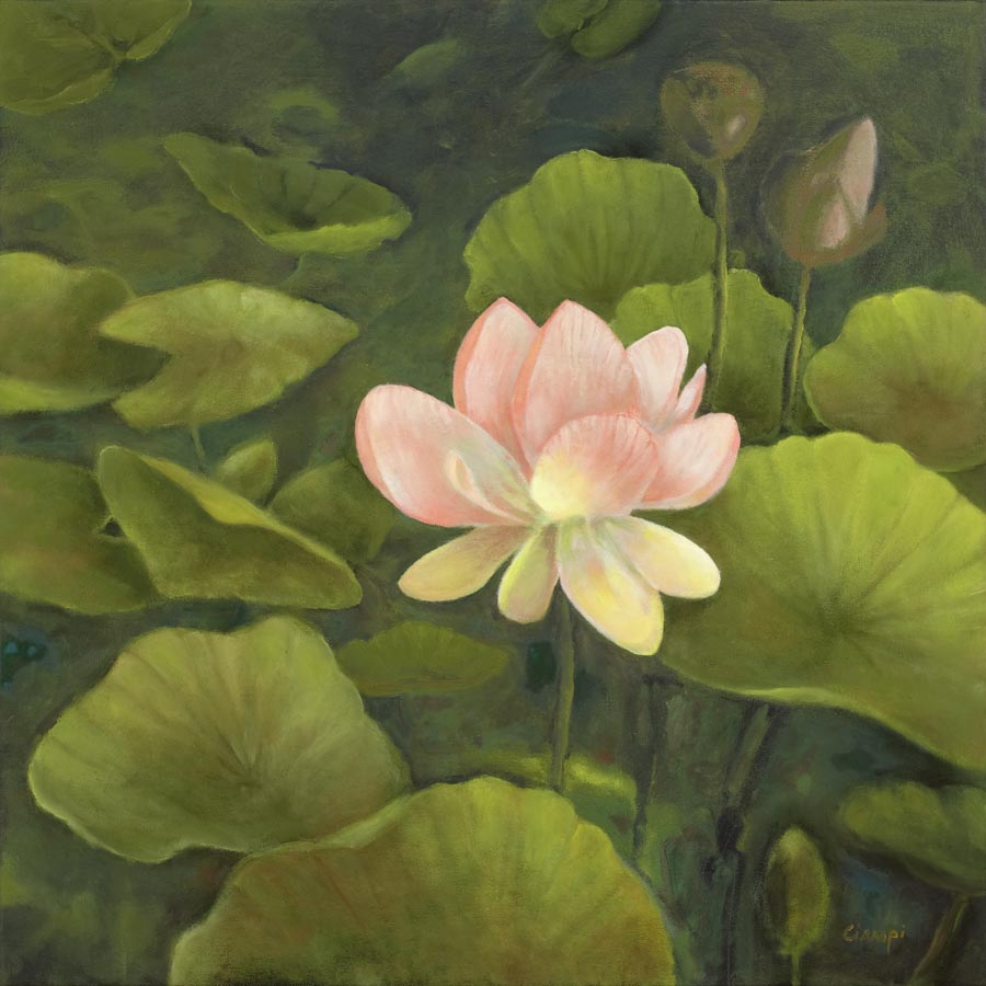 Fine art print editions of koi ponds lilies and lotus flowers by fine art print on canvas izmirmasajfo
