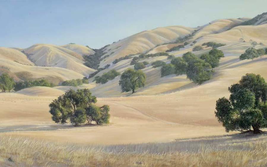 karen fedderson california landscape page 1